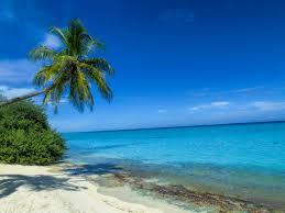 100 Kuramathi Island Maldives Imgur