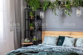 graue schlafzimmer innenraum mit frischen pflanzen auf metallgestell mit dekor kingsizebett mit bettwäsche grün und fenster mit vorhängen stockfoto