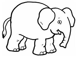 Coloring Pages Of Zoo Animals For Preschool Preschoolers