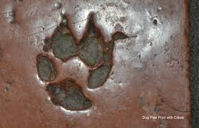 footprints captured in clay dave etzold s