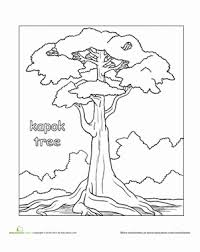 Second Grade Coloring Worksheets Color The Kapok Tree