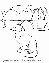 Ecosystem Coloring Page Wolf Mask Paw Print Activity