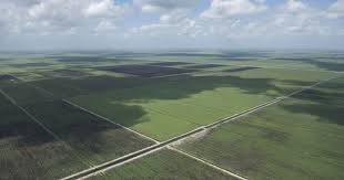 Mckee Ranch Pumpkin Patch 2015 by Dep Budget Request Includes 95 Million For Treasure Coast Projects