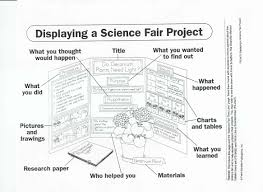 Science Fair Project Display Board
