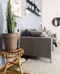 kaktus wohnzimmerideen livingroom pflanze