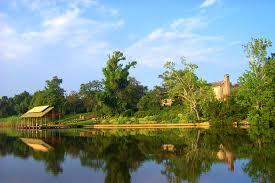 Down on the Bayou Boardwalk Bellingrath s beautiful Fowl River