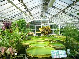 100 Define Glass House Greenhouse Definition Types Uses Britannica