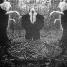 Spirit Halloween Bakersfield Calloway by Pin By Ozde Colakoglu On Black And White Pinterest Horns Horn