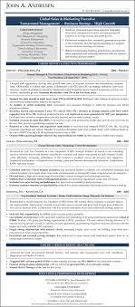Sample Resume Sales Marketing