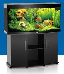 juwel aquarium vision 260 juwel vision 260 aquarium and cabinet juwel regular promotions