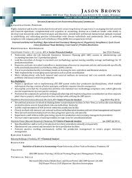 Business Banker Resume Controller Example Sample