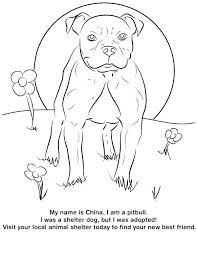 Husky Coloring Pages Puppy Colouring Stock Top Rated