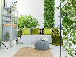 indoor dschungel für dein zuhause lslb magazin