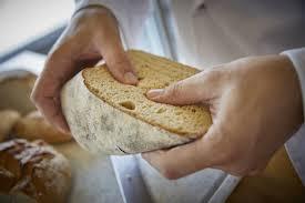 teil 2 die brotprüfung bäckerei k u