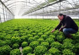 chambre agriculture gers chambre d agriculture lot et garonne 9 la nouvelle pac