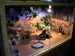 slate tiles for bearded dragons home decor interior exterior