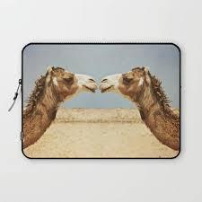baise au bureau camel laptop sleeve housse les chameaux animaux amour et