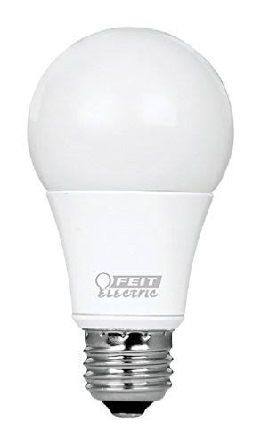 Feit Electric Led Light Bulb - 450 Lumens, 2 Pack