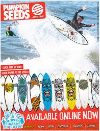 Santa Cruz Pumpkin Seed Surfboard by Dcr Surfersdesk Page 11