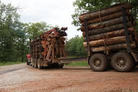 Missouri | Logging By State | Pinterest | Logging Equipment Page 4 Used Volvo Fh16 650 6x4 Tmmerbil Med Kran Og Henger Logging Trucks Logging Trucks Truck Set Up Design Build Millstui Eclipse Wireline Eline Ncuaqmdorg Linkbelt 4300cii Linebaugh Photos And History Sierra Nevada Museum 2002 Mack Cl713 Tri Axle Log For Sale By Arthur Trovei Sons Rio Grande Models Ltd Linn Stock Images Alamy Off Highway Used Equipment At Jenna What Is Platooning Of Big Rig It Safe