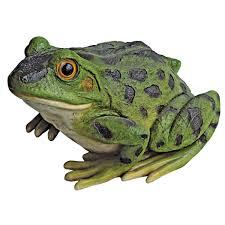 Ribbit The Frog And Garden Toad Statue Ranas Ranas