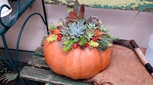 Pumpkin Picking Lancaster County Pa by Where To Make Spooky Fairy Gardens This October Plus More Garden