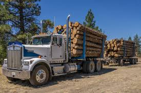 Log Truck Loaded With Juniper - Treesource Kenworth W900a Cars For Sale 2018 Kenworth Australia 85 Best Log Trucks Images On Pinterest Bear Bears And C500 Self Loading Logging Truck Part 3 Youtube Great West Greatwest Ltd Log Truck Loaded With Juniper Treesource W900 V 10 Fs17 Mods Ats American Trucks 2007 Highway H198 At Jenna Equipment Semi Sale New Used Big Rigs From Pap Filekenworth K104 Logging Truckjpg Wikimedia Commons