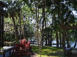 The Shed Restaurant Homosassa Fl by Beautiful Riverfront Retreat Vrbo