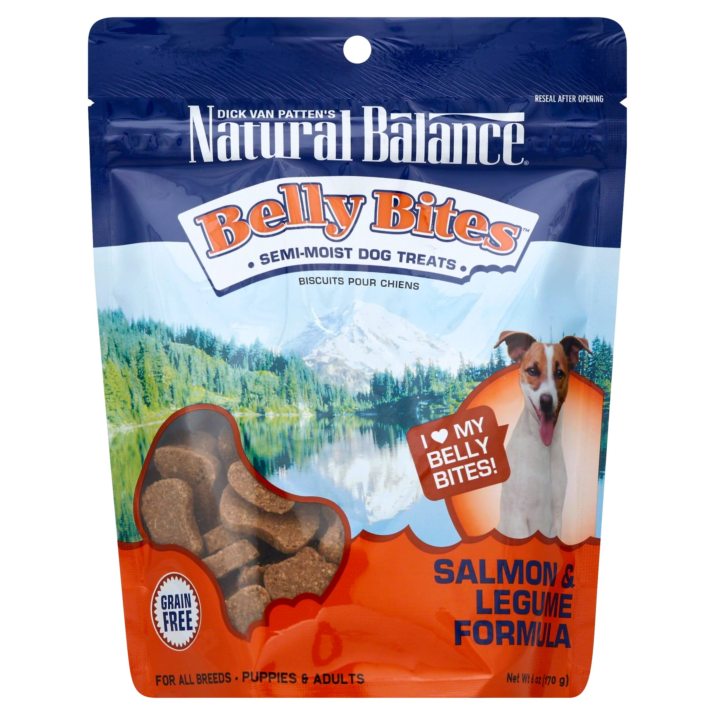 Natural Balance Belly Bites Semi-Moist Dog Treats - Salmon and Legume Formula, 6oz