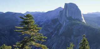 Ahwahnee Dining Room Tripadvisor by Yosemite Hotel And Lodging Yosemite National Park Evergreen Lodge