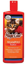 Do Maine Coons Shed Their Mane by What U0027s The Best Shampoo For Cats 7 Purrfect Picks U2013 Purrfect Cat