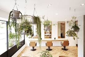 honey by chord picture gallery friseursalon