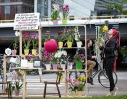 öffentliches orchideen wohnzimmer in düsseldorf