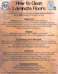 Floor And Steam Cleaners Best Hardwood Floor Steam Cleaner Floor