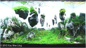 Best Of Aquascapes - Fabuluxedecor | Fabuluxedecor An Inrmediate Guide To Aquascaping Aquaec Tropical Fish Most Beautiful Aquascapes Undwater Landscapes Youtube 30 Most Amazing Aquascapes And Planted Fish Tank Ever 1 The Beautiful Luxury Aquaria Creating With Earth Water Photo Planted Axolotl Aquascape Tank Caudataorg 20 Of Places On Planet This Is Why You Can Forum Favourites By Very Nice Triangular Appartment Nano Cube Aquascape Nature Aquarium Aquascaping Enrico A Collection Of Kristelvdakker Pearltrees