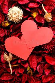 coeur de en pot coeur de papier sur le pot pourri série 3 image stock
