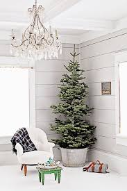 Potted Christmas Tree by 30 Stunning Potted Christmas Tree Decoration Ideas U2013 Christmas