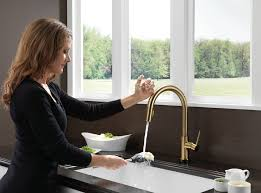 Delta Trinsic Bathroom Faucet Champagne Bronze by Delta 9159t Cz Dst Trinsic Single Handle Pull Down Kitchen Faucet