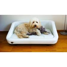 repulsif chien pour canapé repulsif chien pour canap 54 images 2 chiens canape répulsif
