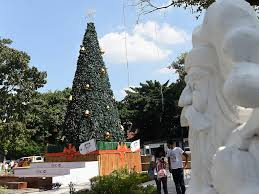 Sri Lankas Senior Catholic Said Christmas Trees Had No Religious Significance And Instead Become The Festive Symbol Of Parties Shopping Centres