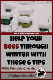 25+ Beautiful Beekeeping Ideas On Pinterest | Bees, Bee Keeping ... Hive Time Products A Bee Adventure For Everyone Bkeeping Everything You Need To Know Start Your First Best 25 Raising Bees Ideas On Pinterest Honey Bee Keeping The Bees In Your Backyard Guide North Americas Joseph Starting Housing And Feeding Top Bar Beehive Projects Events Level1techs Forums 562 Best Images Knees 320 Like Girl 10 Mistakes New Bkeepers Make Splitting Hives Increase Cookeville Bkeepers Nucleus Colony Or How A 8 Steps With Pictures