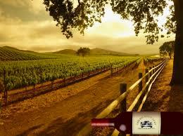 Rosenthal Wine Bar Patio Malibu by 5 Best La Wine Tasting Tours Santa Barbara Wine Tours U0026 Limousine