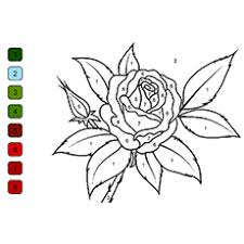 Rose Color By Number Coloring Sheet