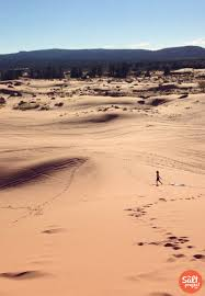 Sand Mountain Pumpkin Patch by Feature Friday Coral Pink Sand Dunes The Salt Project Things