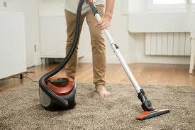 Fleas Hardwood Floors Borax by Happy Tails