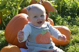 Best Atlanta Pumpkin Patch by Best Pumpkin Patches And Farms Near Seattle