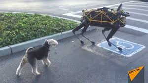 Real Dog Meets Boston Dynamics Robot Dog For First Time - YouTube 5 In 1 Paw Patrol Roll Mega Track Lookout Tower Dog Dogsmom Exploring The Blogosphere Unboxing Paw Patrol Roll Rockys Barn Rescue And Play Fun The Barn Spider Fun Animals Wiki Videos Pictures Stories Hasbros Realistic Joy For All Companion Pet Dog Page Qvccom Steven Universe Back To Episode Recap Point Of A Transporter Problems With Patroller Blocks Robo Jeanne Wilkinson May 2014 Best 25 Products Ideas On Pinterest Collars Leashes Owners Reminded Vaccinate Cats After Dover Cases Of Feline