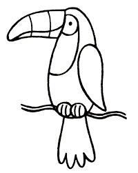 Toco Toucan Coloring Page DiyWordpressme