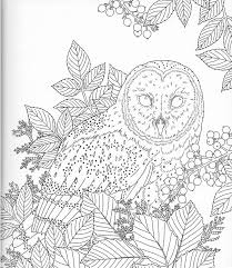 Harmony Of Nature Adult Coloring Book Pg 16