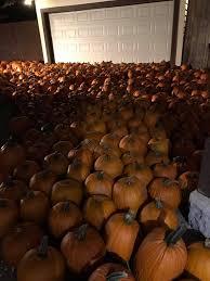 Pumpkin House Kenova Wv Hours by The Stoddard Avenue Pumpkin Glow Home Facebook